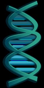 Online gene testing for health