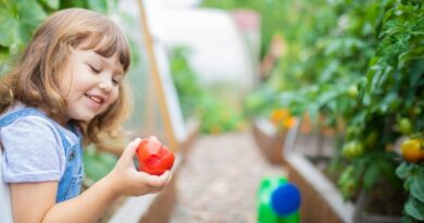 The benefit of home aquaponic system for the family